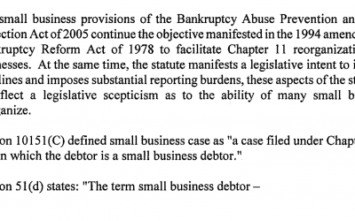 Small Business Bankruptcy Provisions
